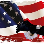 bald-eagle-american-flag-images
